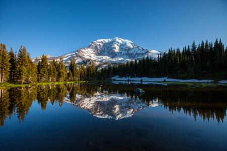 rainier: Mt.Rainier