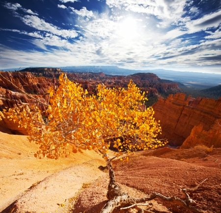 bryce: Bryce canyon in fall season Stock Photo