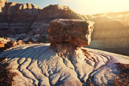 jurassic: Petrified Forest National Park, Arizona.