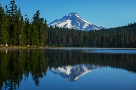 Mount. Hood in Oregon photo