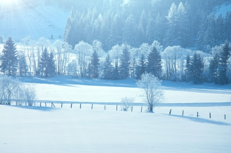 Winter Alp  mountains in Austria photo