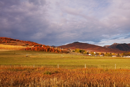 fields in fall season photo