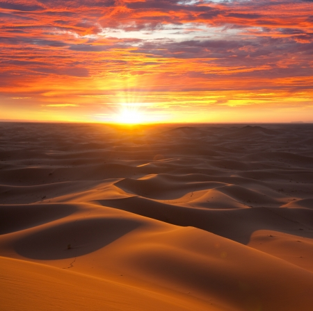 africa sunset: Deserto