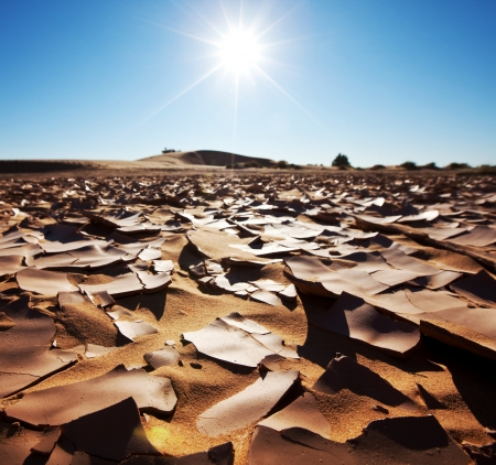 Drought land Stock Photo - 15610972