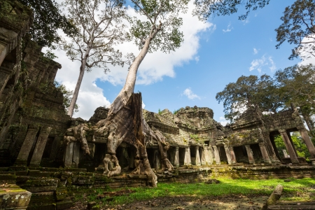 Angkor, Cambodia photo
