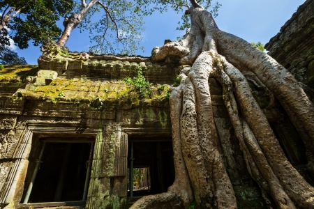 siem reap: Angkor, Cambodia Stock Photo