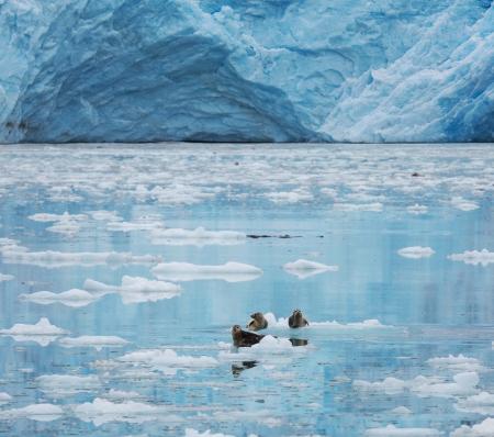 icescape: Iceberg on Alaska Stock Photo