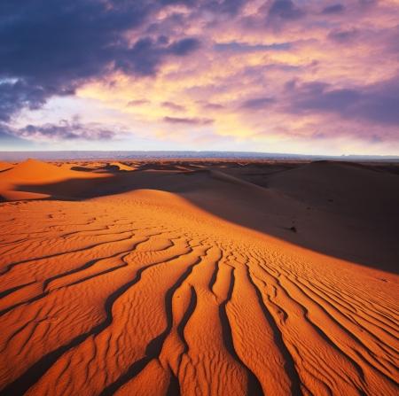 Sahara desert Stock Photo - 17480390