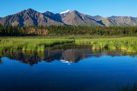 Serenity lake in tundra on Alaska Stock Photo - 17480406
