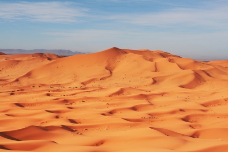 Caravan in Sahara desert Stock Photo - 17565916