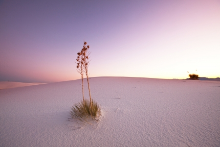 White Sands Park in USA Stock Photo - 17566207
