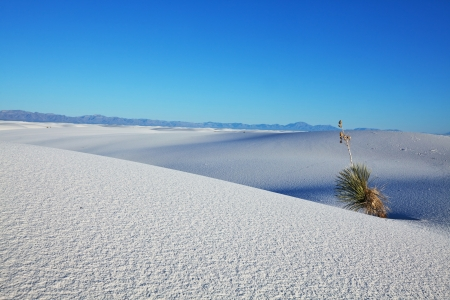 White Sands Park in USA Stock Photo - 17565892