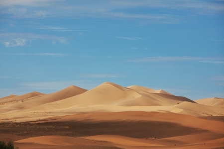 Sahara desert Stock Photo - 17701010