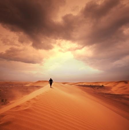 desierto: Caminata en el desierto