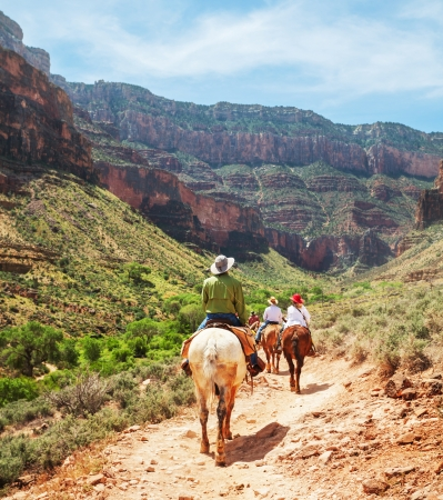 grand canyon national park: Hike in Grand Canyon Stock Photo