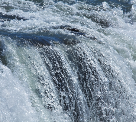 swift: Water