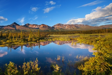 Serenity lake in tundra on Alaska Stock Photo