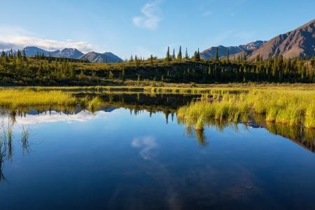 alaska scenic: Serenity lake in tundra on Alaska Stock Photo