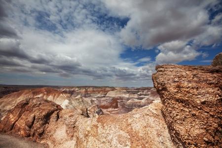 prehistoric: Petrified Forest National Park, Arizona.