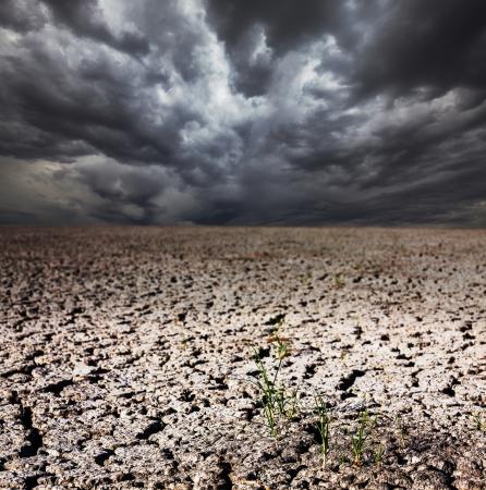 infertile: drought land