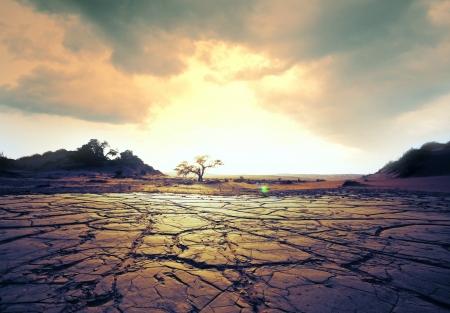 global warming: drought land