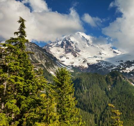 MOUNT RAINIER: Mt.Rainier
