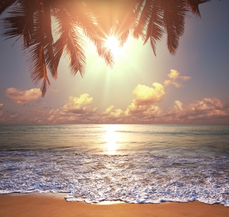 Tropical beach photo