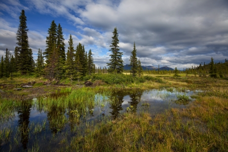 Serenity lake in tundra on Alaska photo