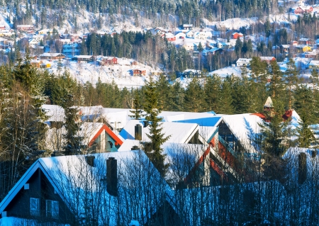 snow covered mountain: ski resort