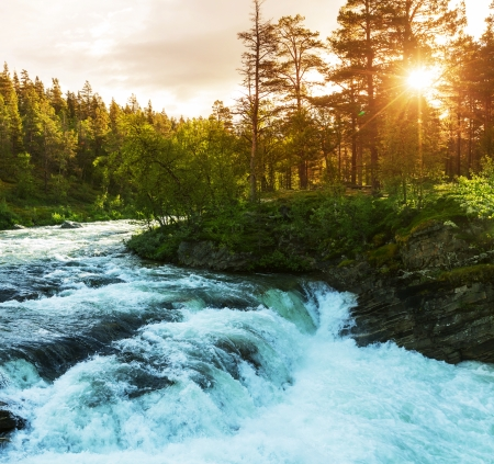 rushing water: River in Norway