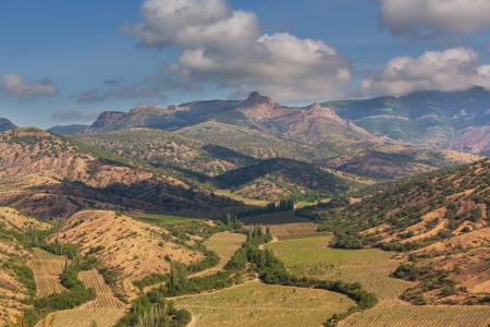 non cultivated: Rural landscapes in Crimean mountains