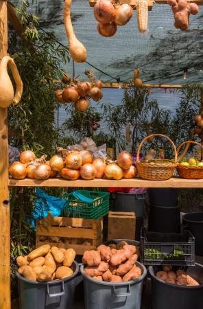 crop harvest: autumn harvest