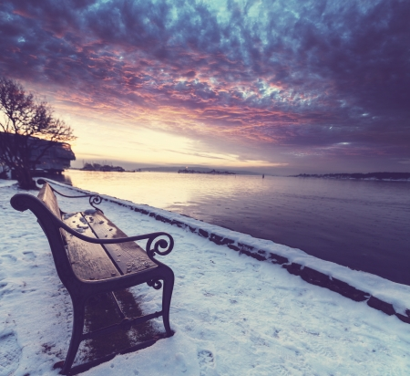 bench in winter photo