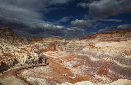 petrified fossil: Petrified Forest National Park, Arizona