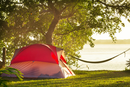 camping tent: tent on green grassland