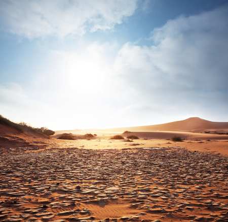 Sahara desert Stock Photo - 27317531