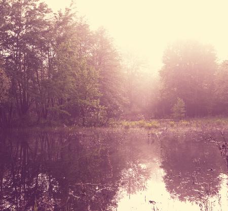 woodland  horror: Lake on sunrise Stock Photo