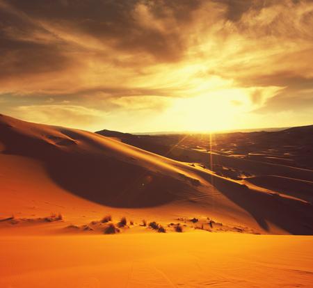 El desierto del Sahara Foto de archivo