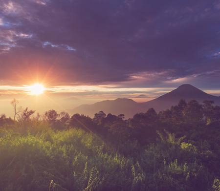 Java  landscapes photo