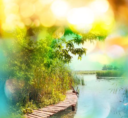 Green summer lake photo