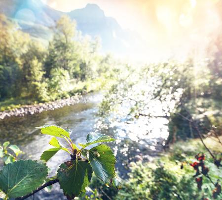 scandinavian landscape: Summer in Norway mountains Stock Photo