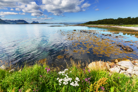 Northern Norway landscapes photo