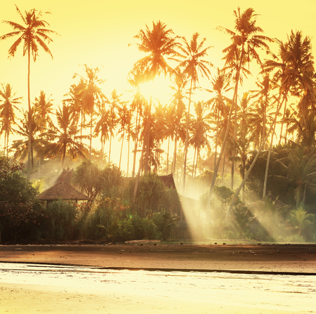 serene landscape: Bamboo huts on tropical island