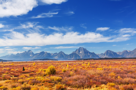 peaceful background: Autumn in Grand Teton National Park, Wyoming