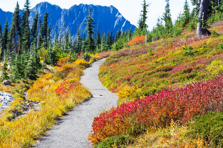 america countryside: Autumn in mountain