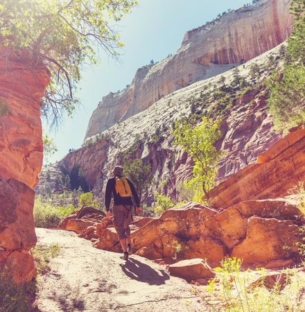 Hike in Zion national park photo