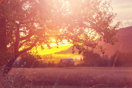 rural landscapes: Rural landscapes at sunrise in Washington