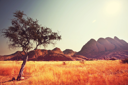 namibia: african landscapes