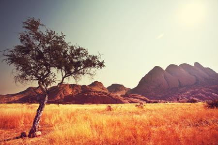 landscape rural: african landscapes