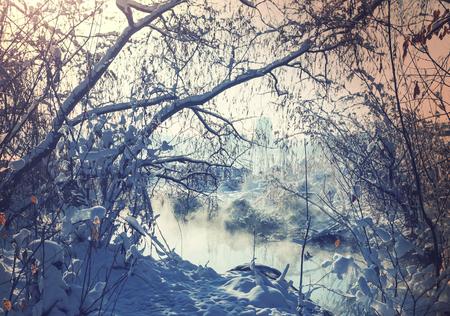 winter thaw: Winter creek